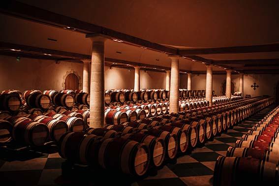 Une vinification sous bois.