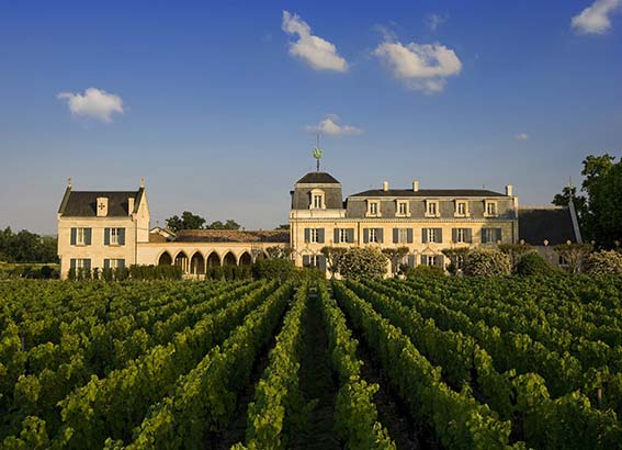 Domaine viticole Château Haut-Brion.