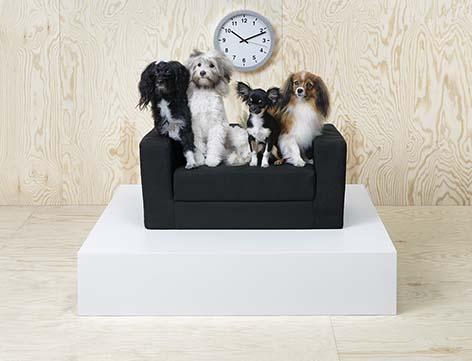 Ikea - Lit chien
